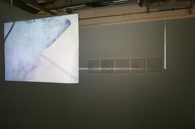 Trace #1 by Sarah King, Sculpture, Installation: Film and Still Image